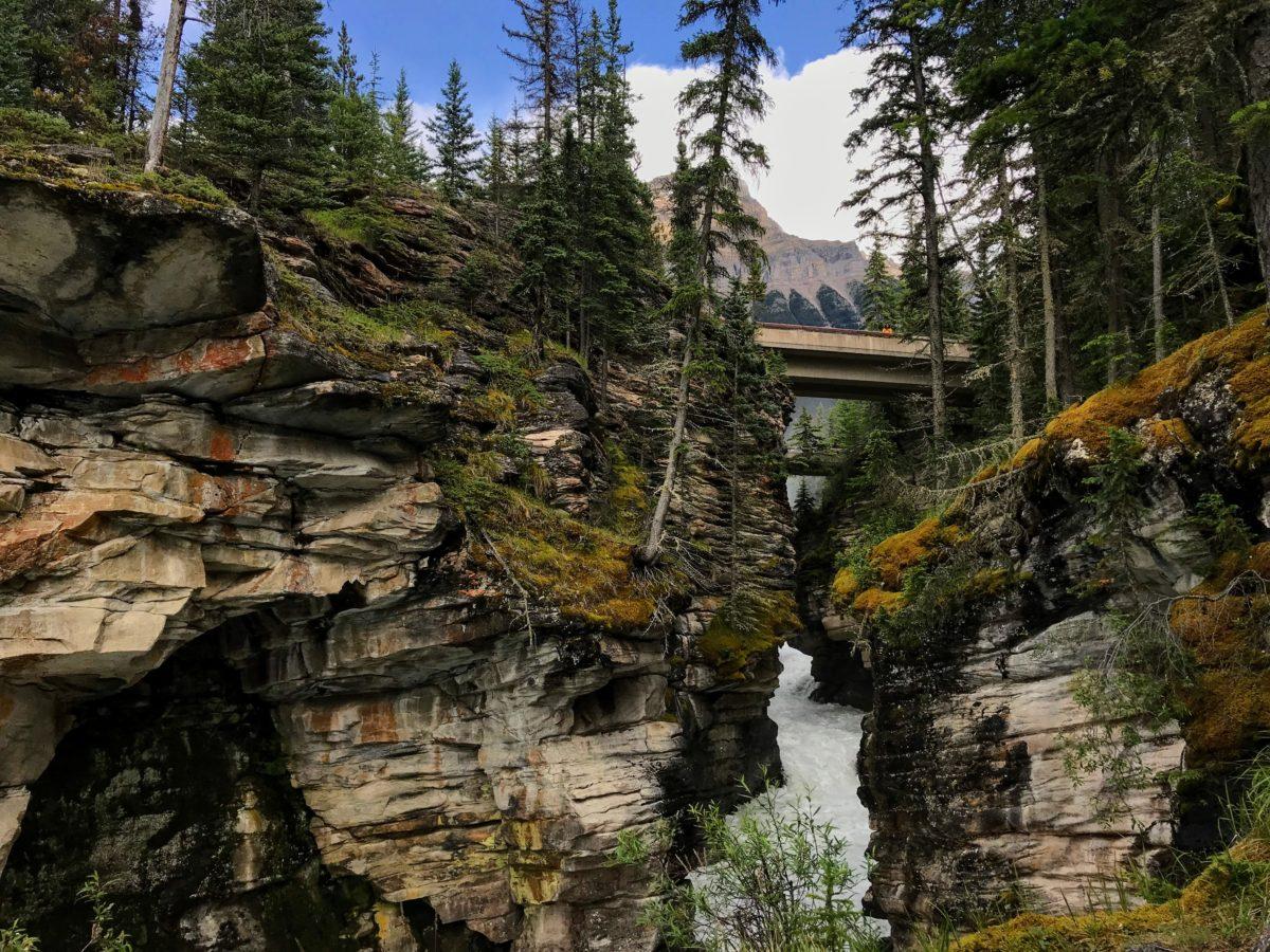 Brug Athabasca Falls
