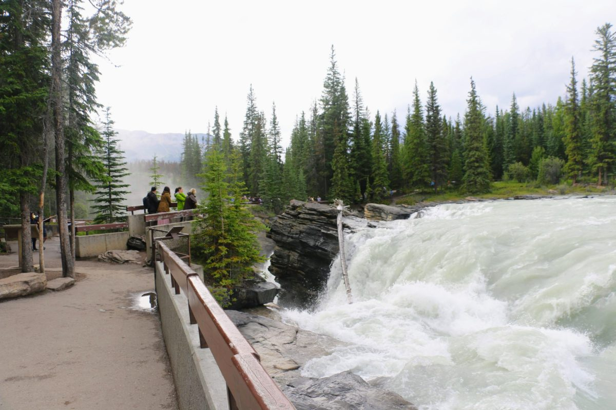 Athabasca Waterval Jasper