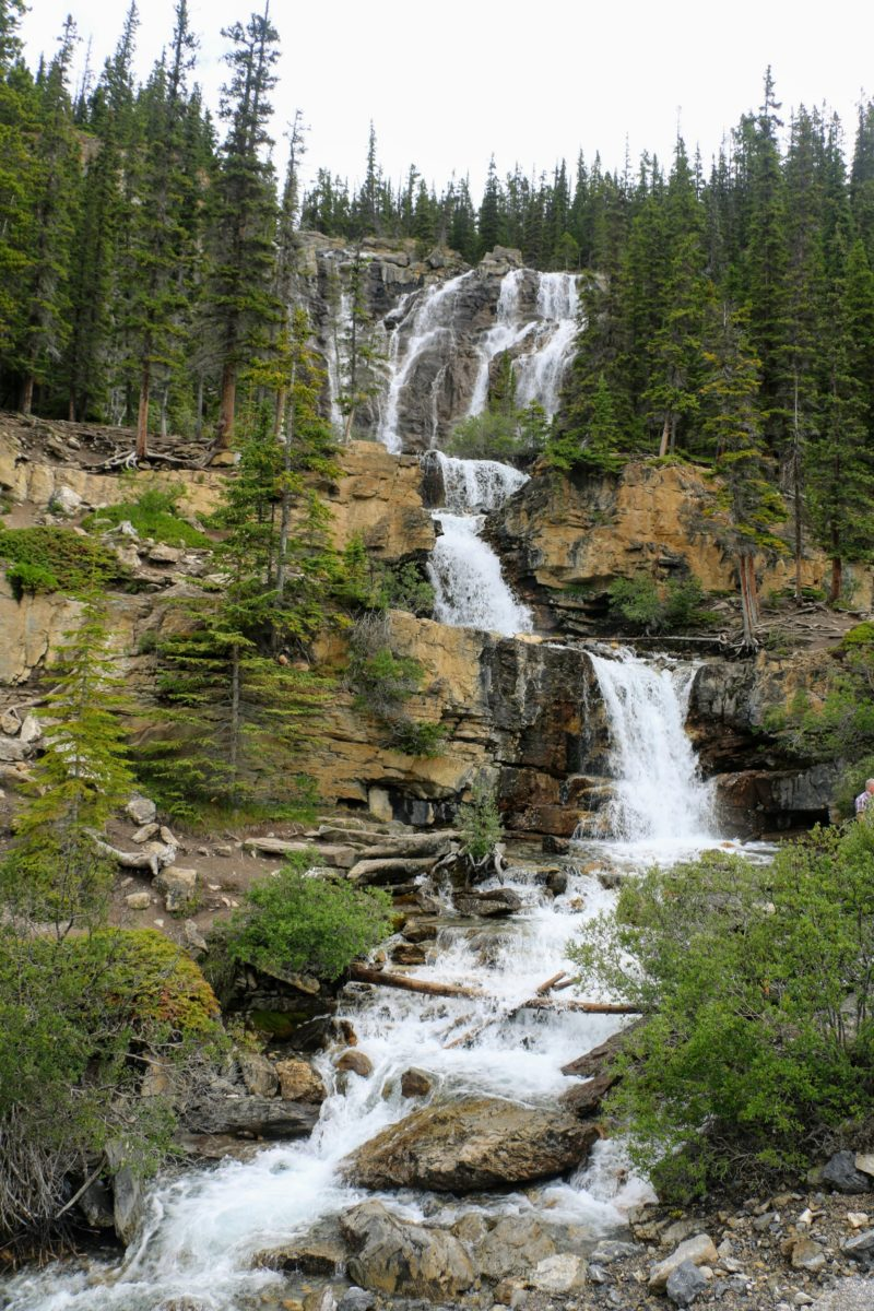 Tangle Creek Ruisseau Tangle