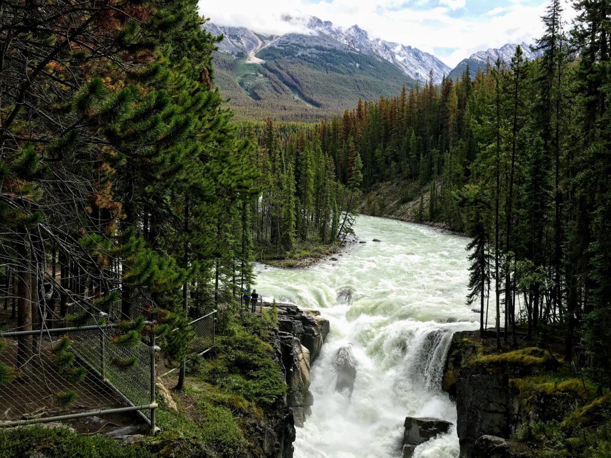 Uitkijkpunt Sunwapta waterval in Canada