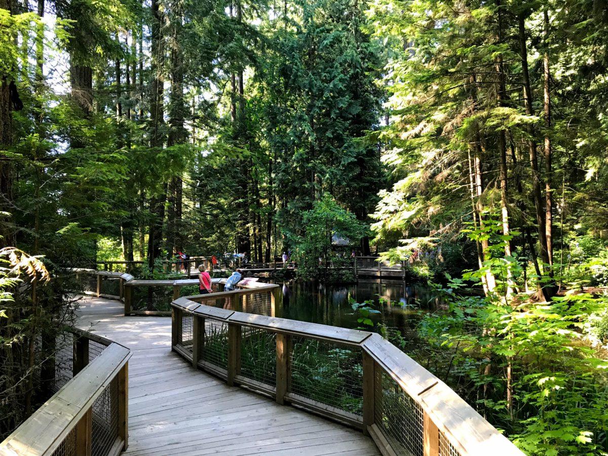 Nature's Edge Boardwalk