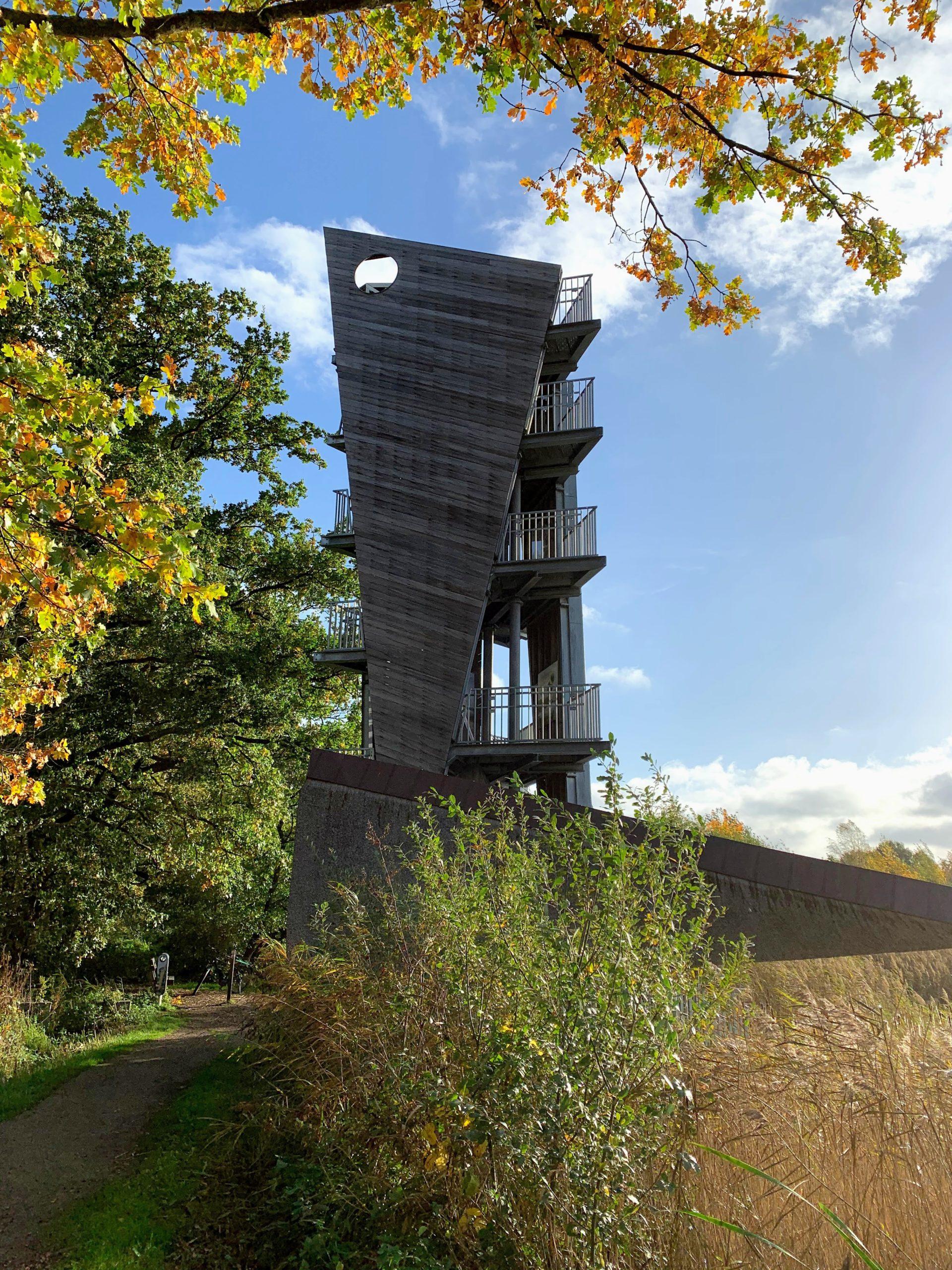 Wandelen naar uitkijktoren in Zonhoven - de Wijers