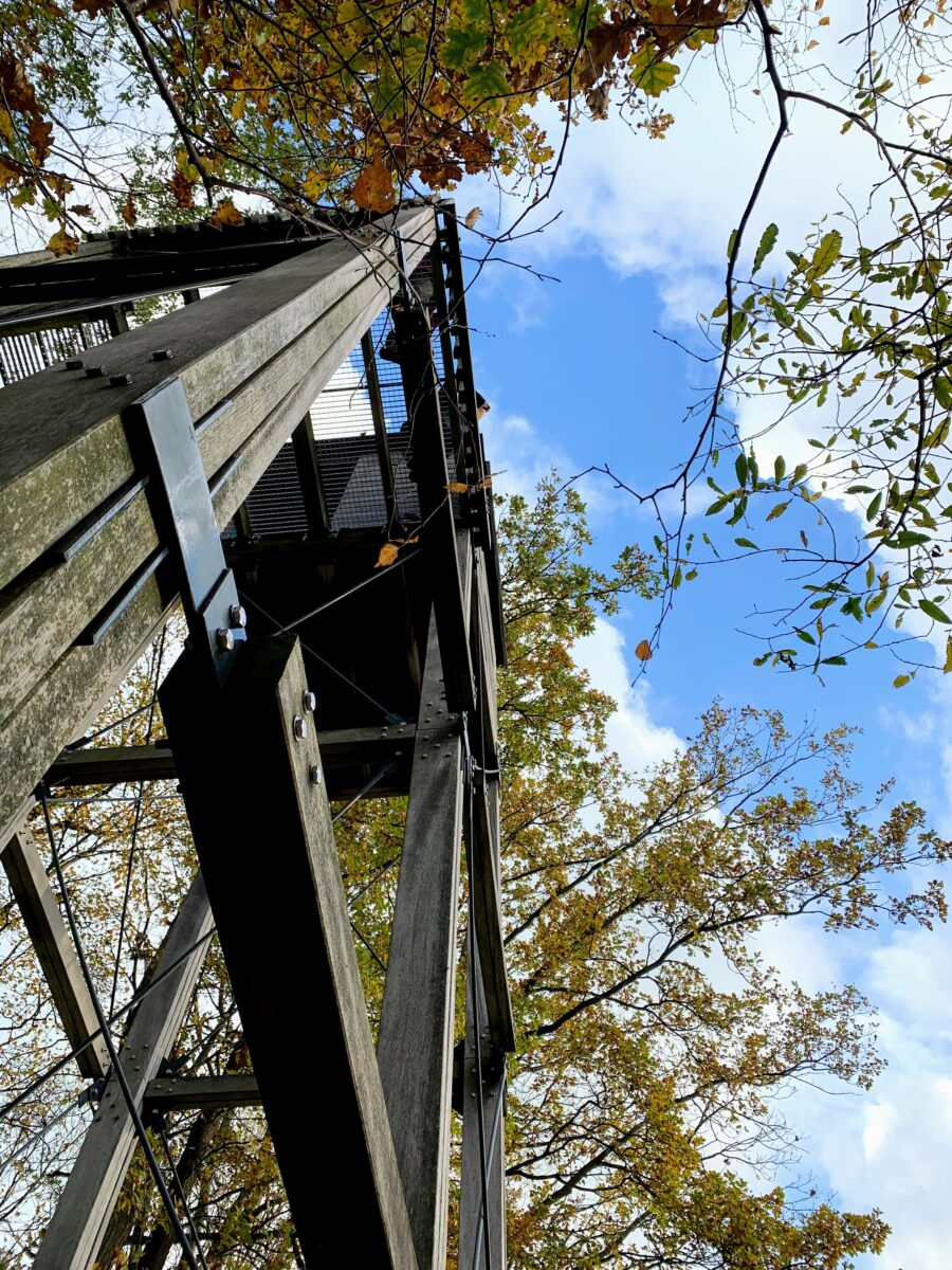Uitkijktoren Begijnenvijvers