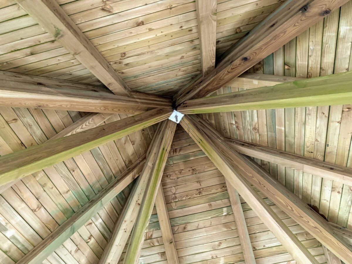 Dak van de uitkijktoren van Berinzenne