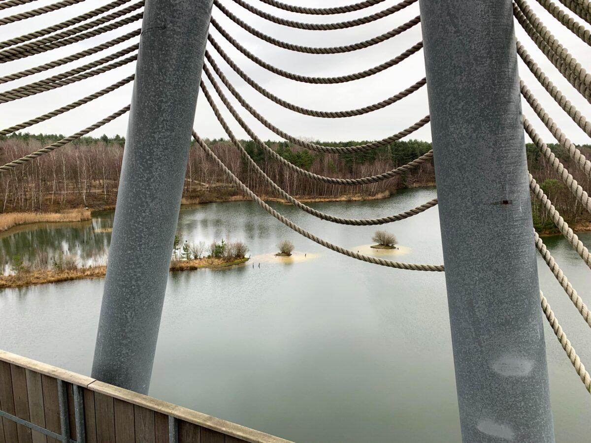Uitkijktoren De Reus van Bosland