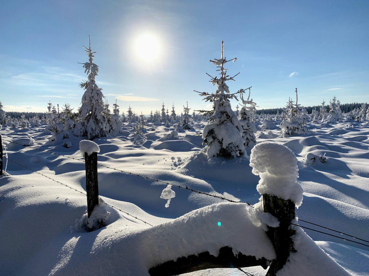Winterlandschap Ardennen