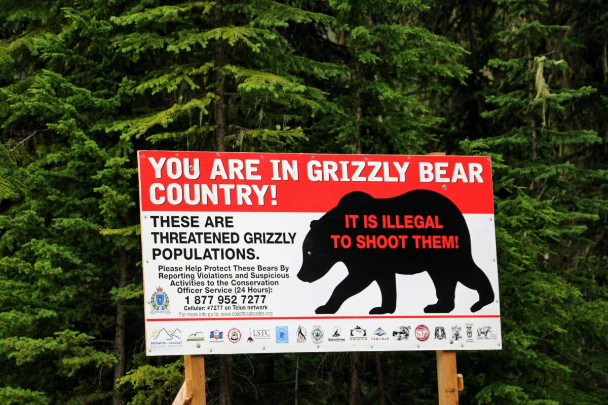You are in Grizzly bear Country