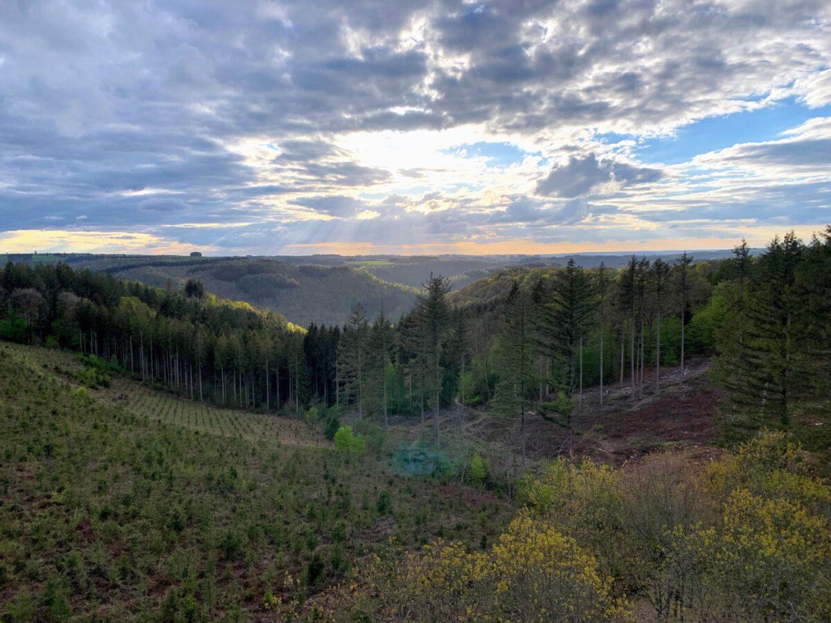 Panorama bossen Bouillon